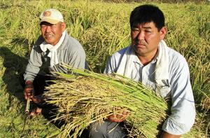 米農家イメージ