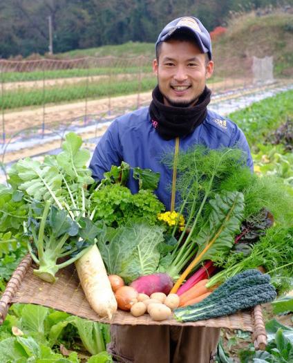糸島野菜イメージ