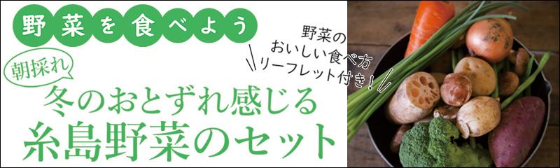 糸島野菜のセット